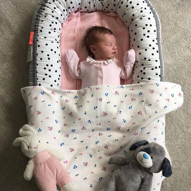 剛出生不到一個月的Willow。