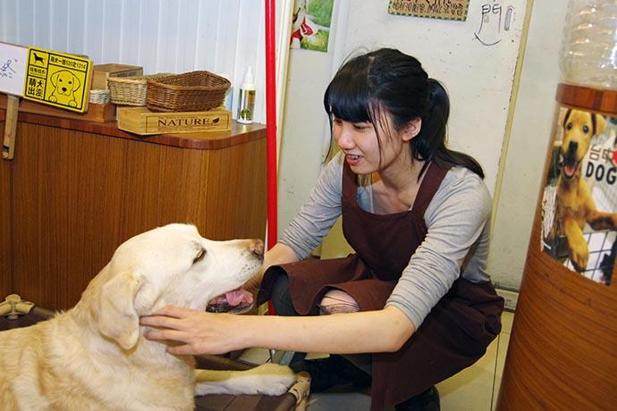 凱茵空閒時也會和咖啡廳的店狗:年終玩一下。